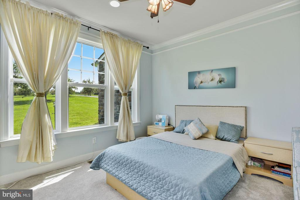 Main Level Bedroom or Home Office - 41192 BLACK BRANCH PKWY, LEESBURG