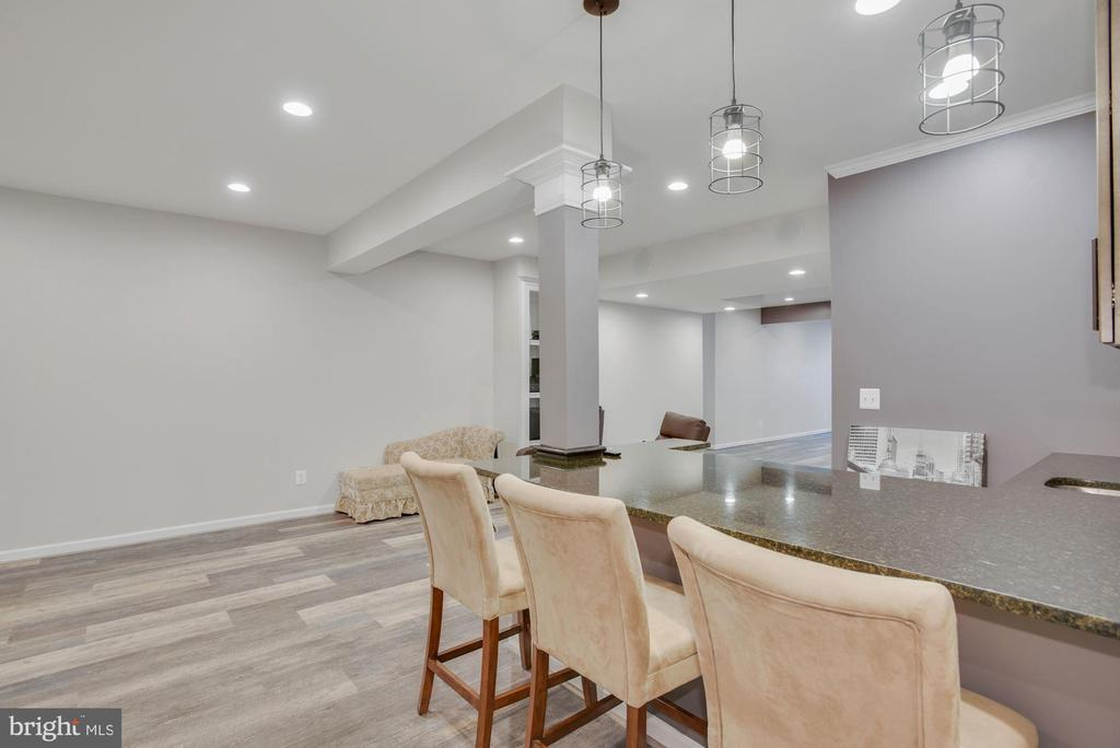 Rec Room in Lower Level with Wet Bar - 41192 BLACK BRANCH PKWY, LEESBURG