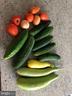 Harvest from the Vegetable Garden - 41192 BLACK BRANCH PKWY, LEESBURG