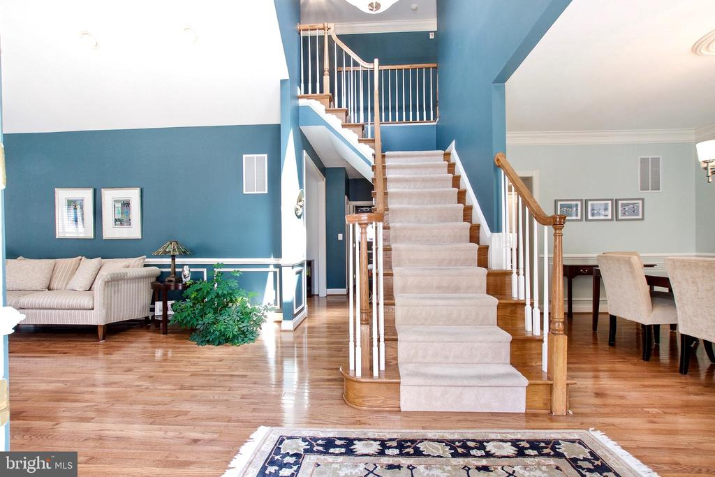 Skylight above 2-story foyer bathes home in light - 25659 TREMAINE TER, CHANTILLY