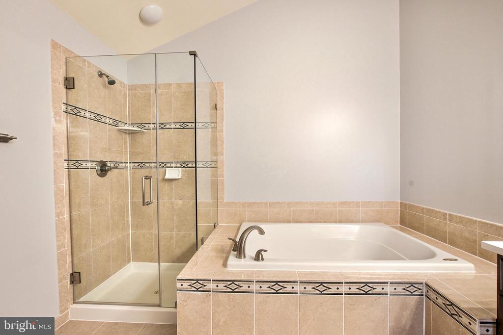 Shower stall has frameless glass enclosure - 25659 TREMAINE TER, CHANTILLY