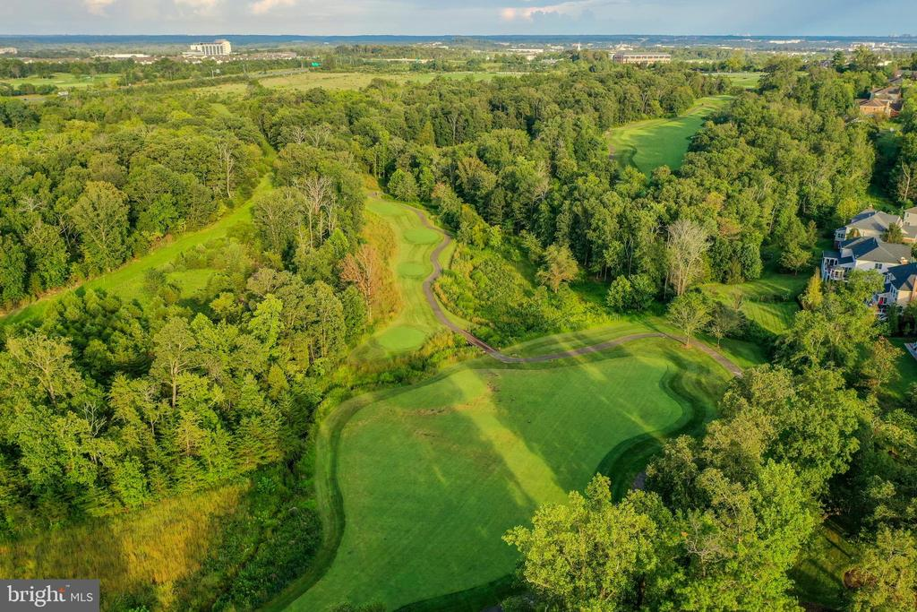 Gorgeous views of the 2nd hole - 19598 SARATOGA SPRINGS PL, ASHBURN