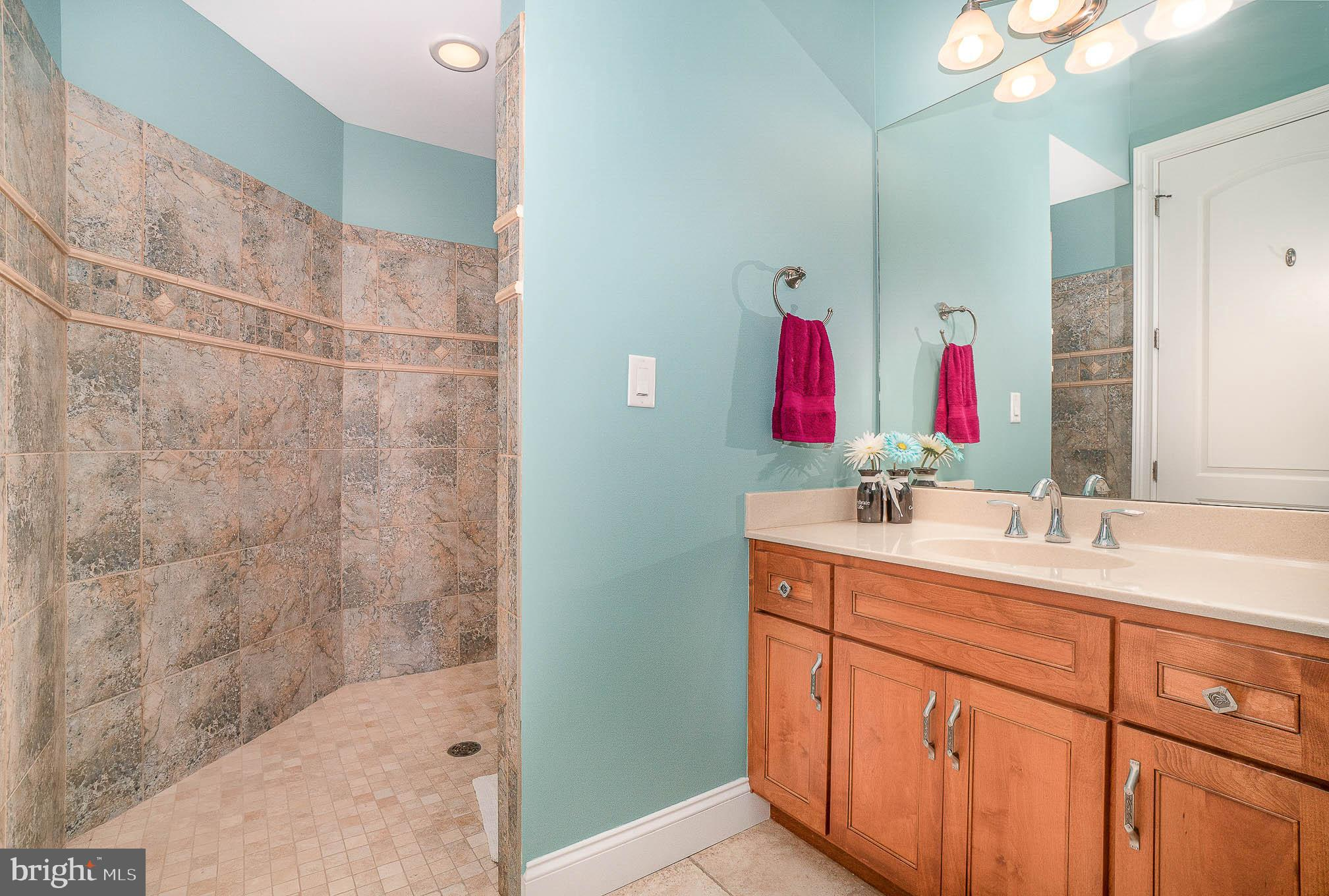 2nd BR bath with walk-in tiled shower