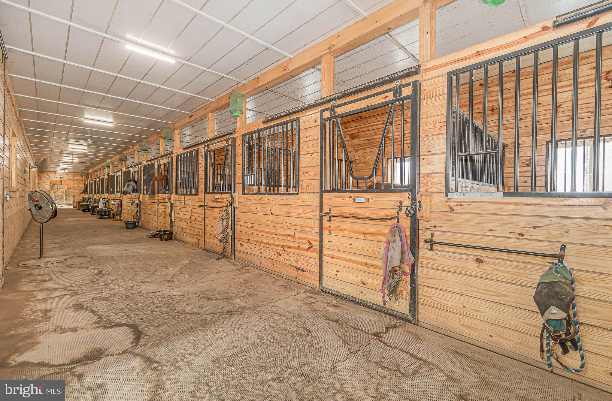 10 Comfort matted stalls, h/c wash & ceiling fans