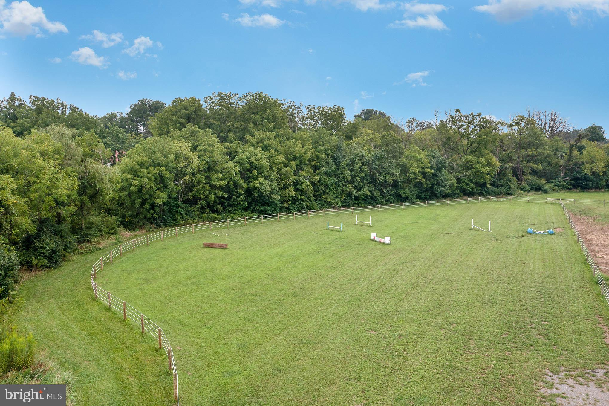 Large jump field
