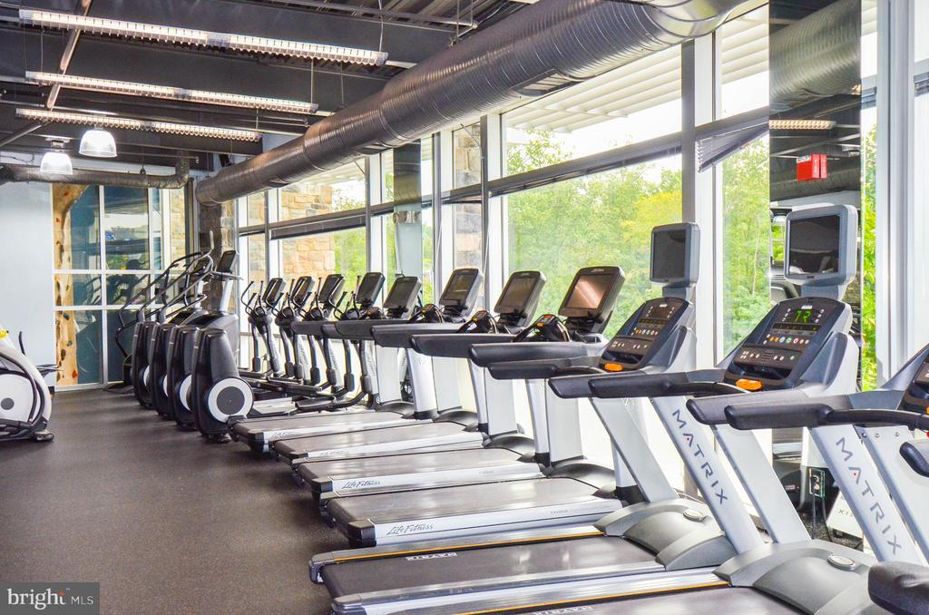 Cardio workout is a breeze! - 2285 MERSEYSIDE DR, WOODBRIDGE