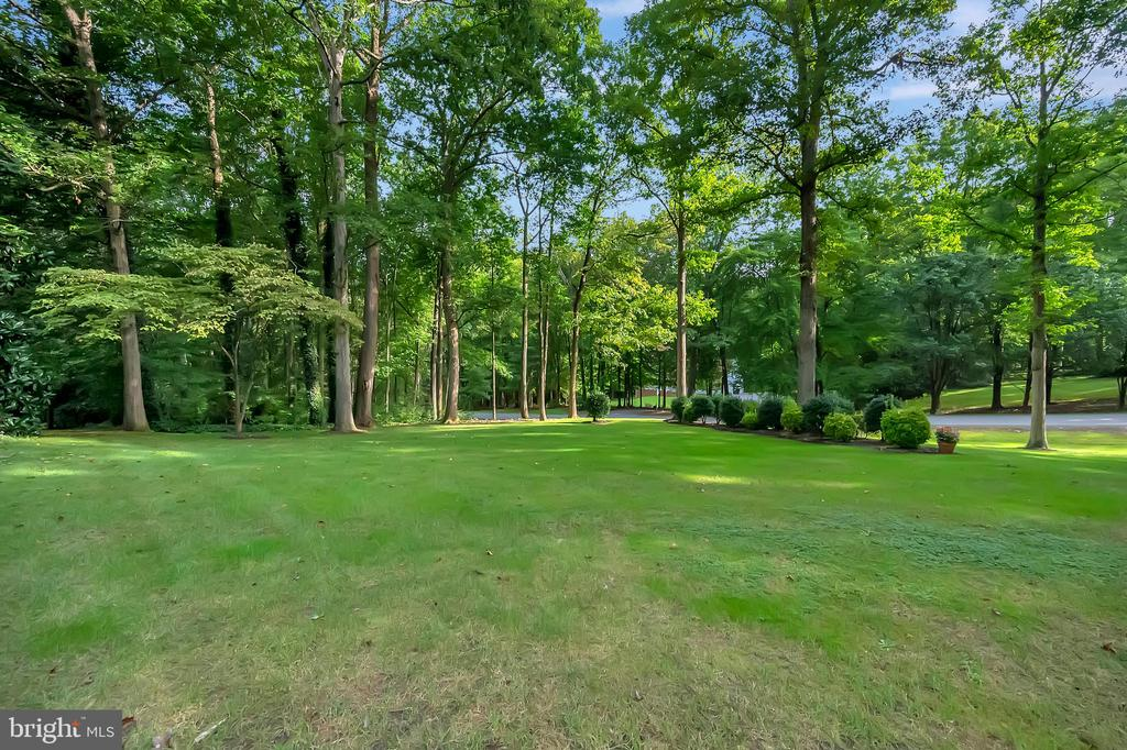 1.3 acres! - 9704 PAMELA CT, SPOTSYLVANIA