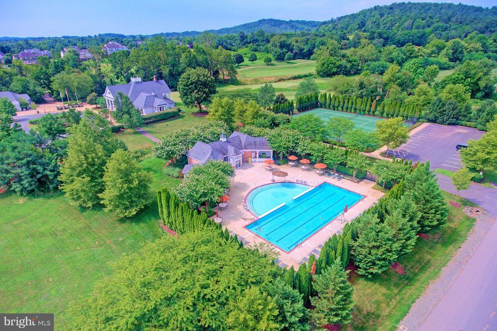 Community swimming pool - 16604 FOX CHASE CT, LEESBURG