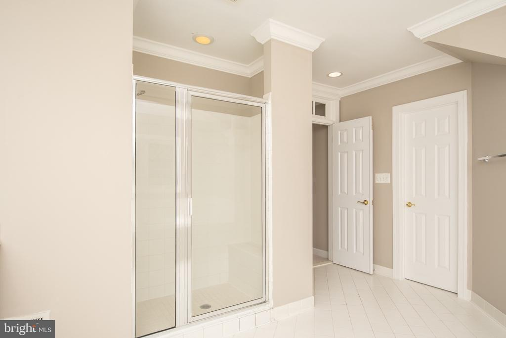 Luxury master shower - 18621 KERILL RD, TRIANGLE
