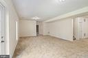 Finished Walk-out Basement - 22554 FOREST RUN DR, ASHBURN