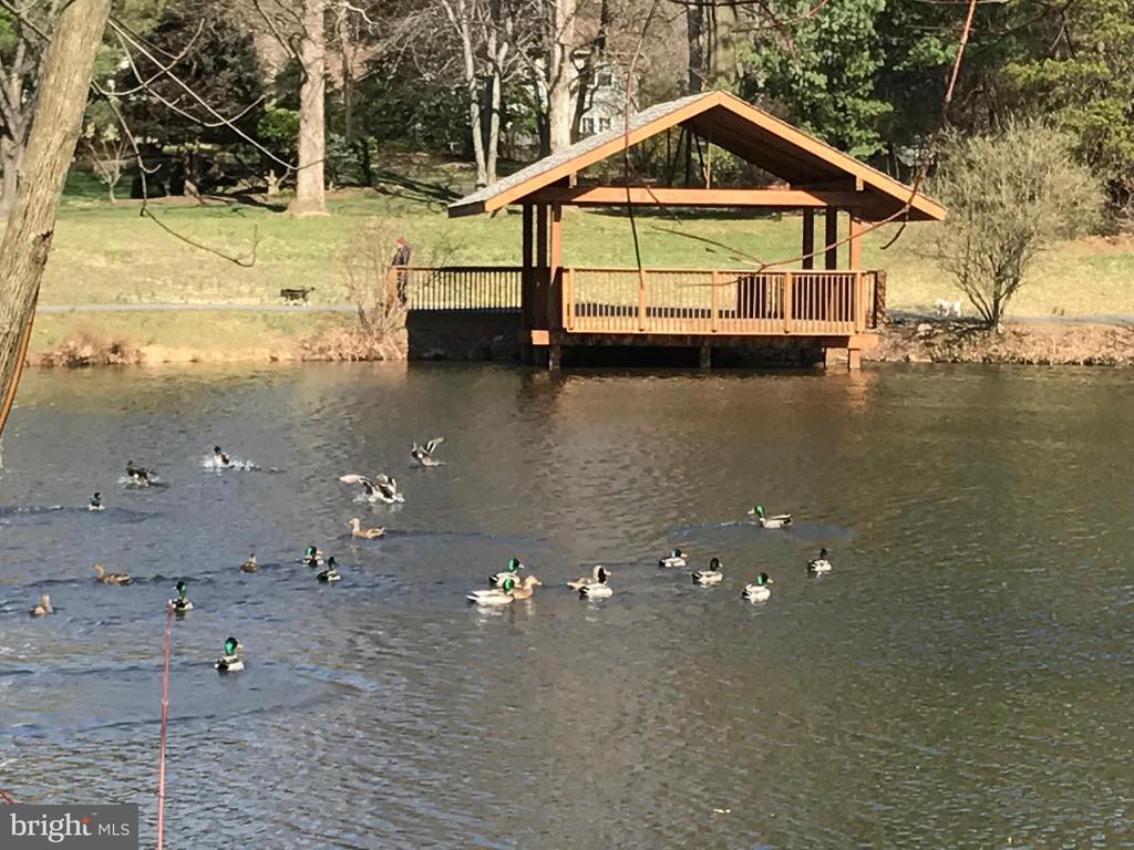 Burke Centre offers several ponds to discover - 9637 LINCOLNWOOD DR, BURKE