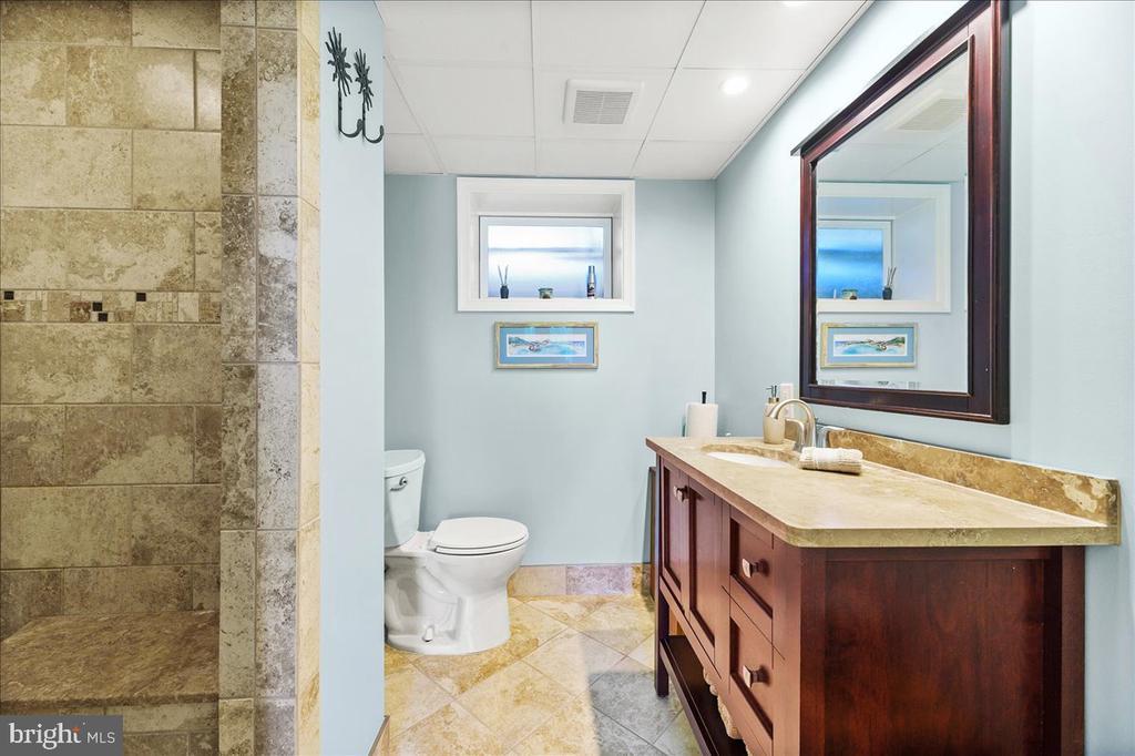 Lower Lvl Full Bath w/Easy Access to Pool - 37872 CHARLES TOWN PIKE, HILLSBORO