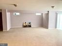 Larger walk out basement - 18494 QUANTICO GATEWAY DR, TRIANGLE