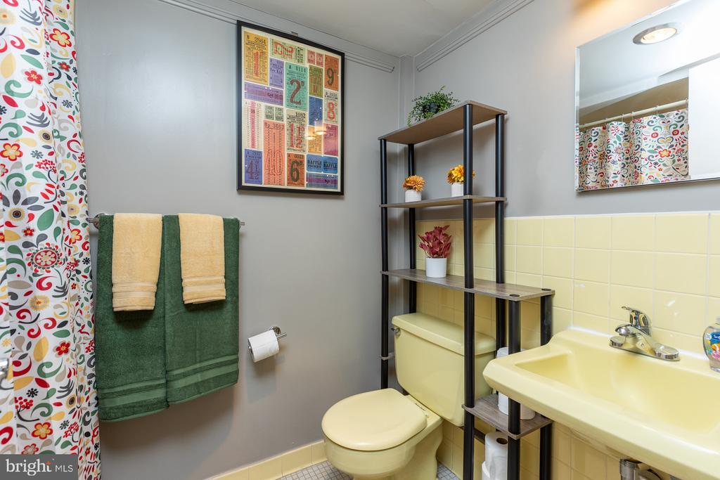 FUN VINTAGE BATHROOM - 11400 WASHINGTON PLZ W #201, RESTON
