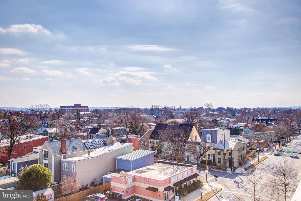 View from rooftop - 525 N FAYETTE ST #222, ALEXANDRIA