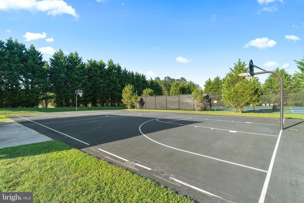 Basketball Court - 11201 BLUFFS VW, SPOTSYLVANIA