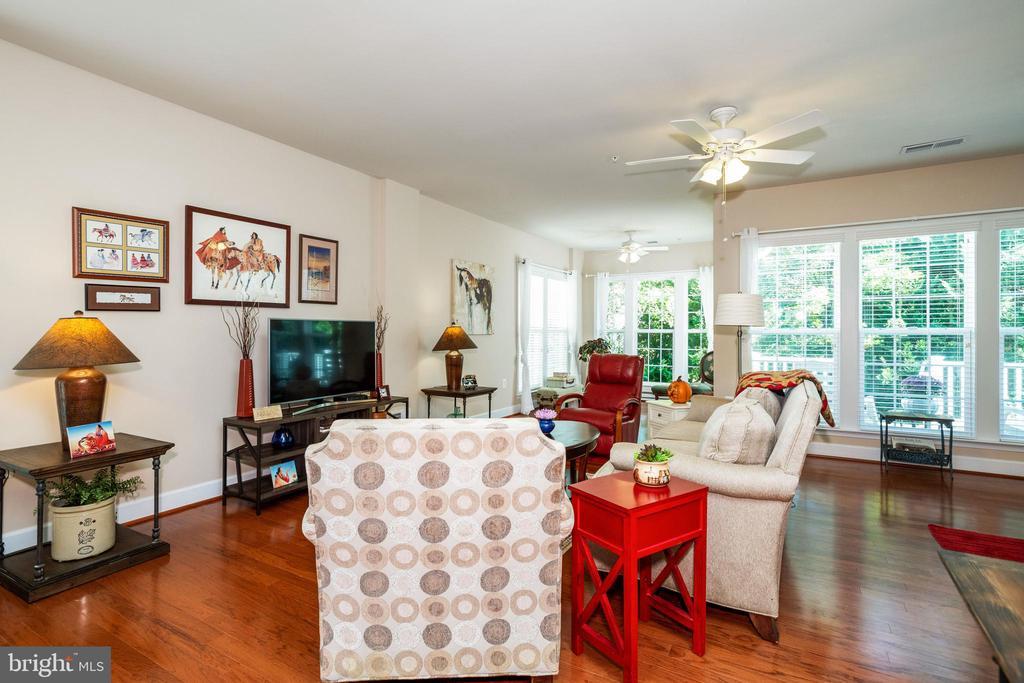Living Room / Sun Room - 43 DENISON ST, FREDERICKSBURG