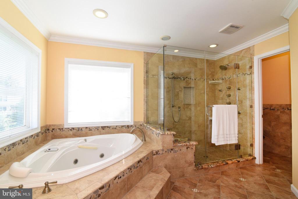 Seamless glass, multi-head shower system & granite - 21320 COMUS CT, ASHBURN
