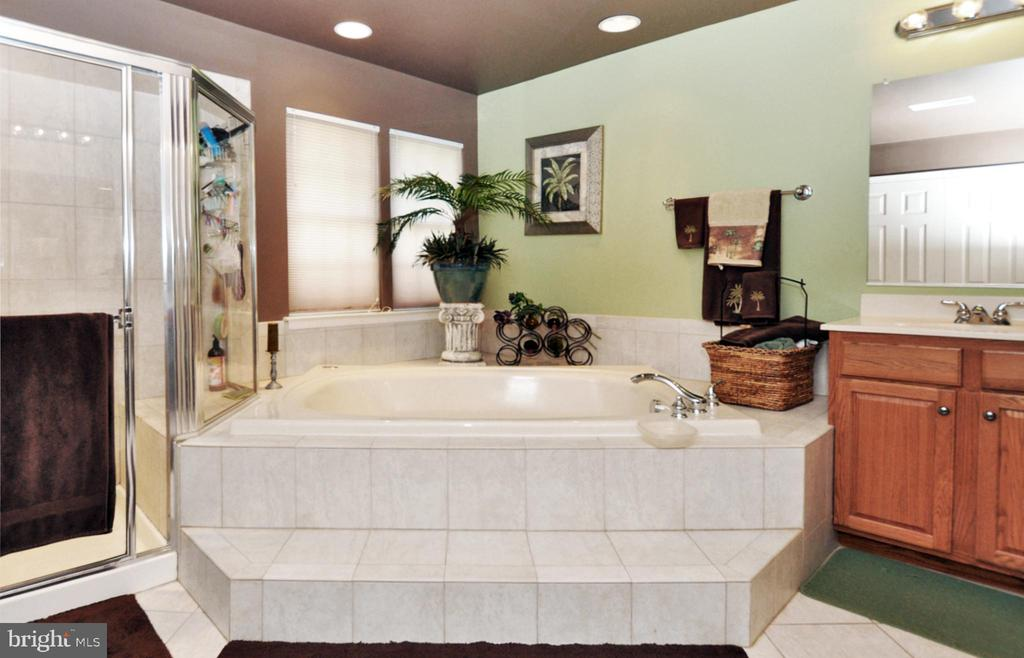Primary bath with large corner Jaccuzi soaking tub - 15305 LIONS DEN RD, BURTONSVILLE