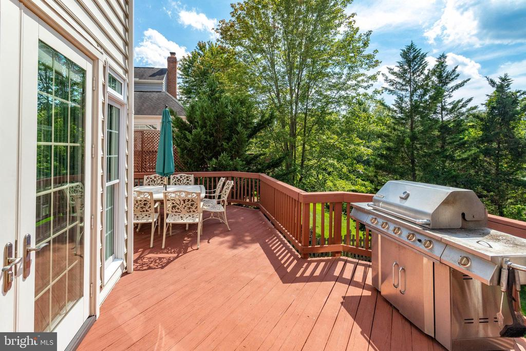 Stretch out and enjoy the quiet - 25891 MCKINZIE LN, CHANTILLY