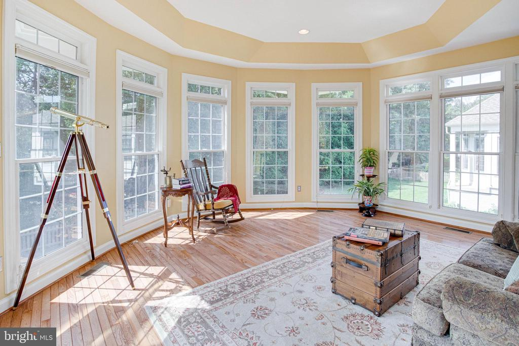 Enjoy views of the yard from indoors - 25891 MCKINZIE LN, CHANTILLY