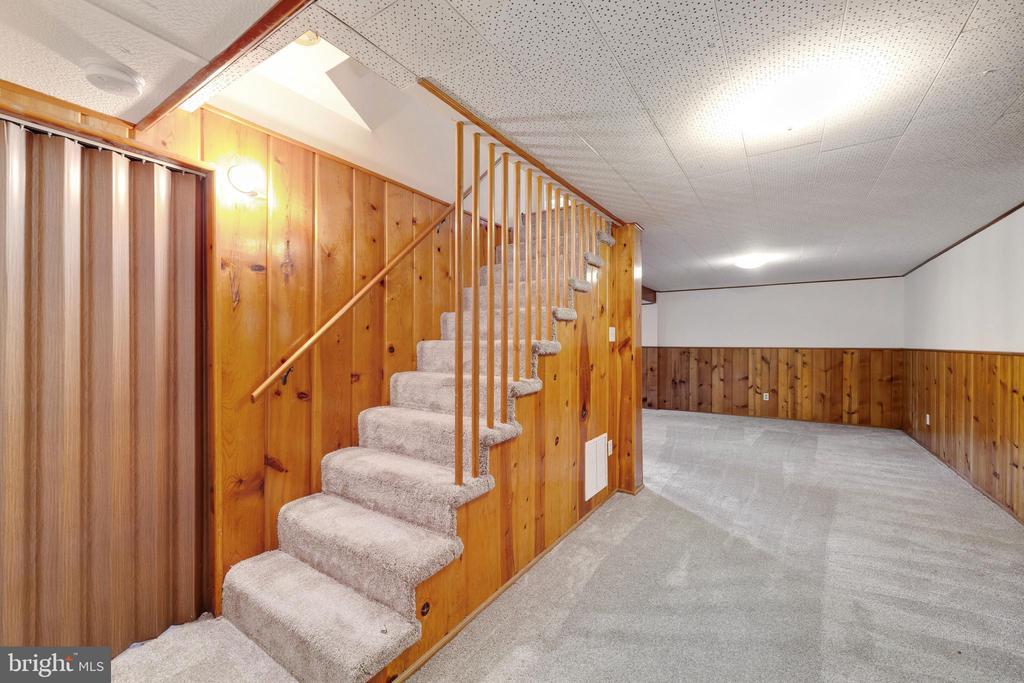 Lower level Recreation Room - 4006 SPRUELL DR, KENSINGTON