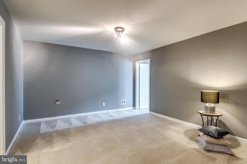 Rec Room w/Carpet and Halogen Light Fixture - 42660 NEW DAWN TER, BRAMBLETON