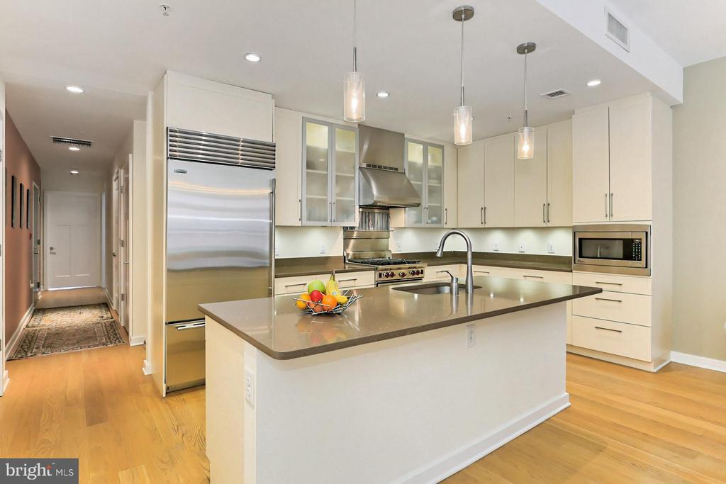 Gourmet kitchen - 1700 N CLARENDON BLVD #123, ARLINGTON