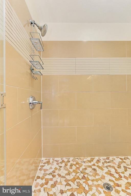 Shower - 1700 N CLARENDON BLVD #123, ARLINGTON