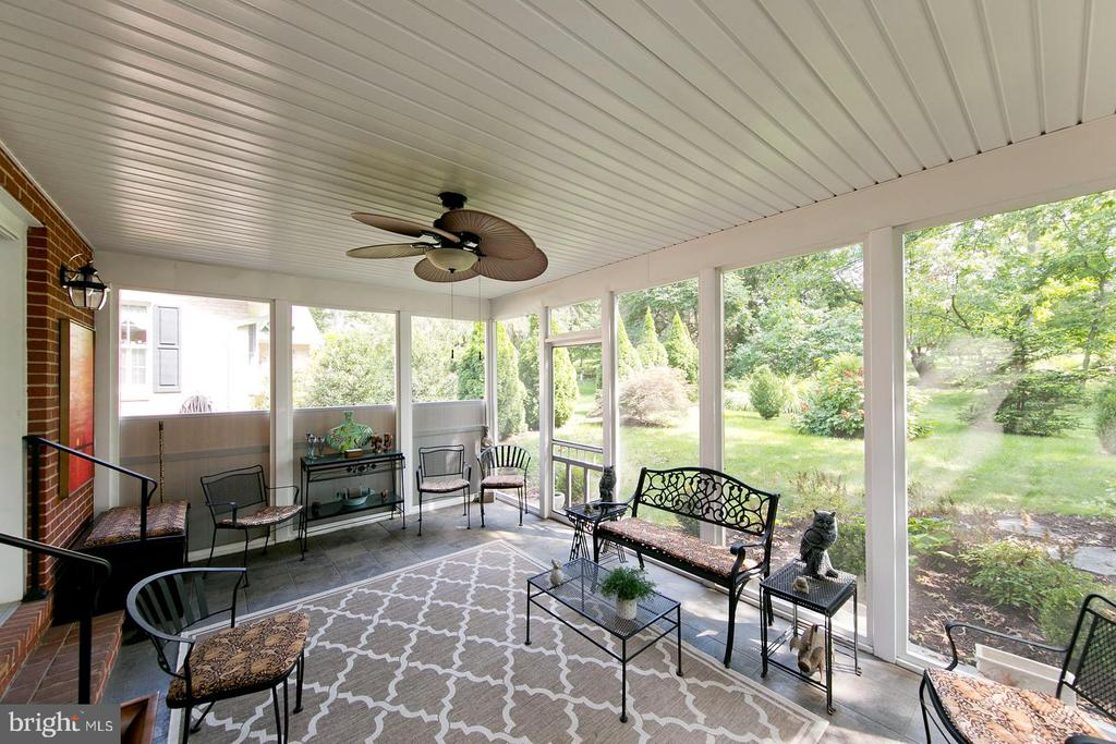 privacy from landscpaing - 1432 RAMSEUR LN, WINCHESTER