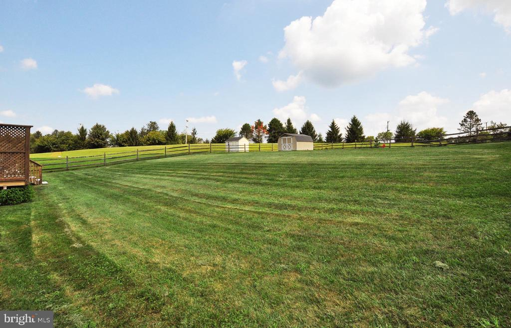 Large fenced rear yard ready for pool!! - 15305 LIONS DEN RD, BURTONSVILLE