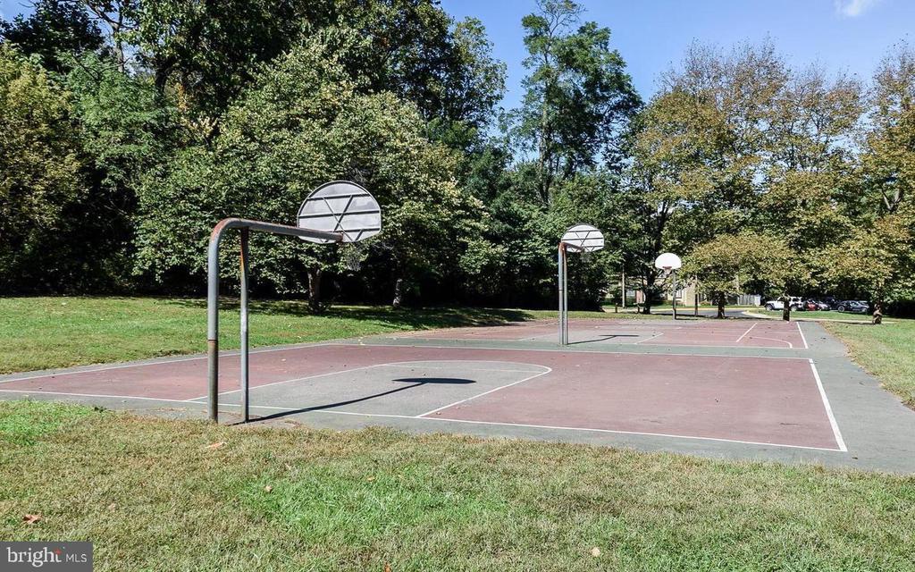 Basketball - 10216 BUSHMAN DR #211, OAKTON