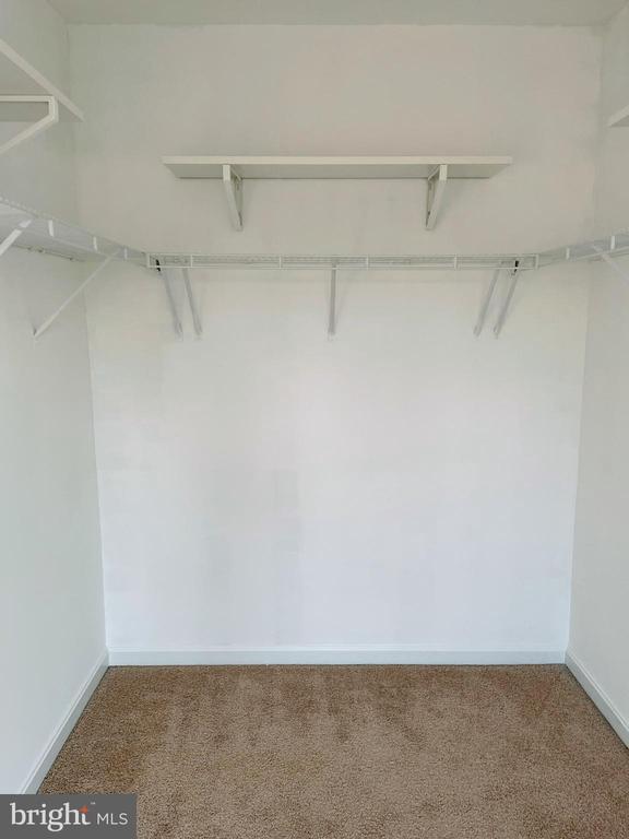Spacious closet. - 43523 MAHALA ST, LEESBURG