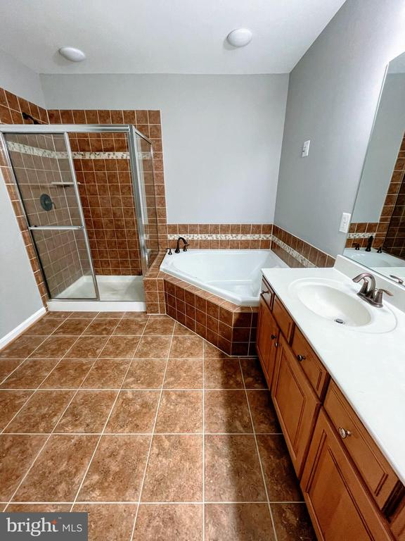 Master bathroom. - 43523 MAHALA ST, LEESBURG