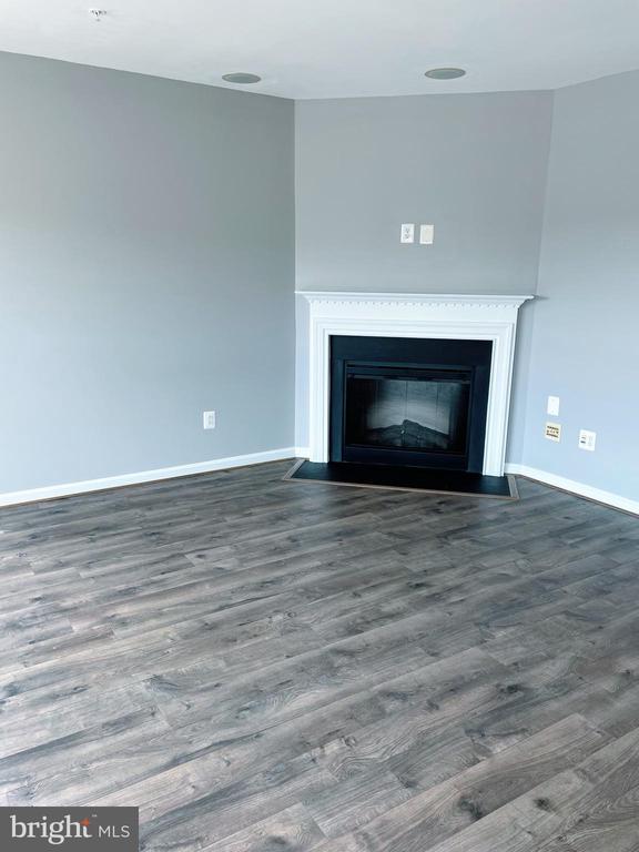 Fireplace. - 43523 MAHALA ST, LEESBURG