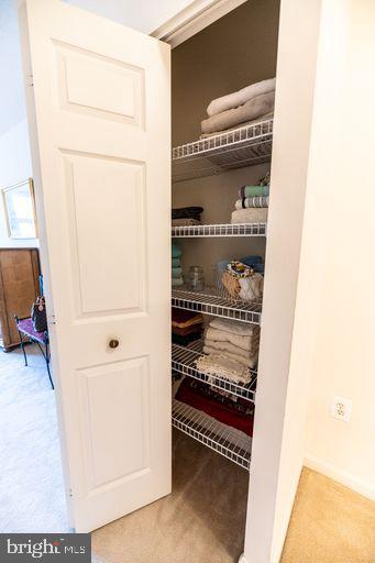 linen closet in prim bdrm - 19375 CYPRESS RIDGE TER #711, LEESBURG