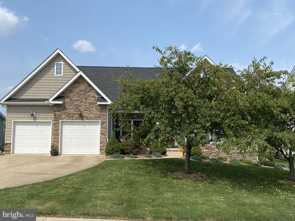Exterior with current mature cherry trees in front - 107 HAROLD CT, WINCHESTER