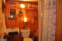 Basement full bath - 11690 FREDERICK RD, ELLICOTT CITY