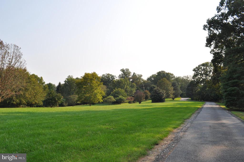 The front lawn, towards the road - 11690 FREDERICK RD, ELLICOTT CITY