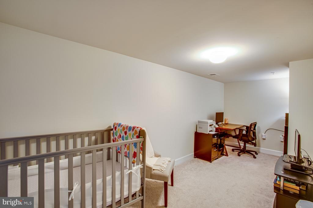 Basement office / finished storage space - 68 TABLE BLUFF DR, FREDERICKSBURG