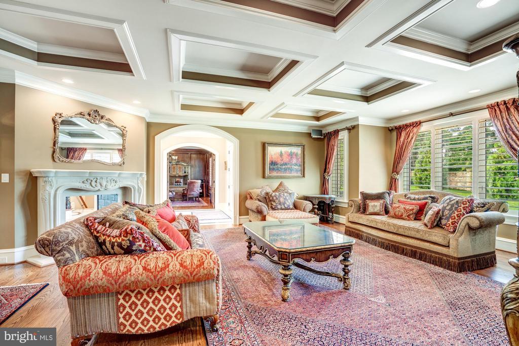 Family Room - Both Comfortable and Elegant - 40483 GRENATA PRESERVE PL, LEESBURG