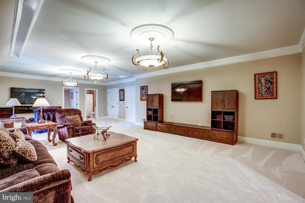 Third Level Recreation/Bonus Room - 40483 GRENATA PRESERVE PL, LEESBURG