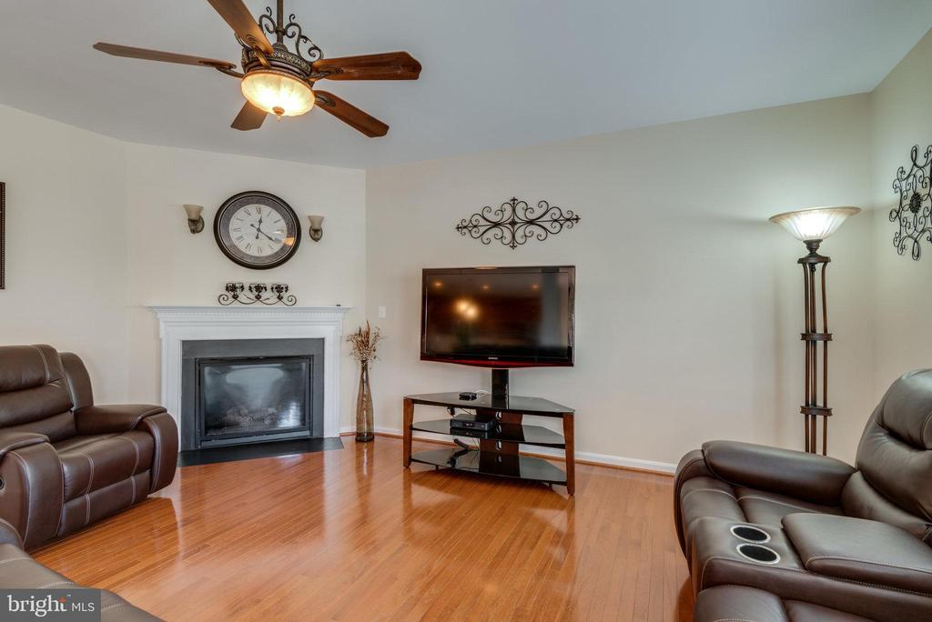 Family Room with Gas Fireplace - 42972 THORNBLADE CIR, BROADLANDS