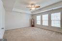 Large Owner's Bedroom with Tray Ceiling - 42972 THORNBLADE CIR, BROADLANDS