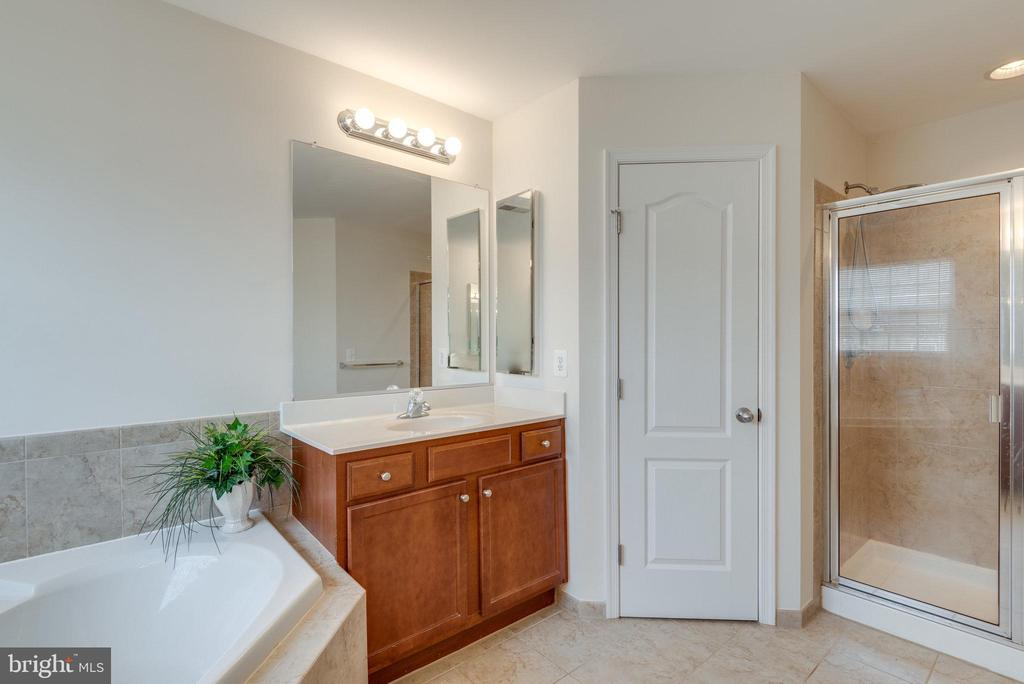 Owner's Suite Bathroom - 42972 THORNBLADE CIR, BROADLANDS