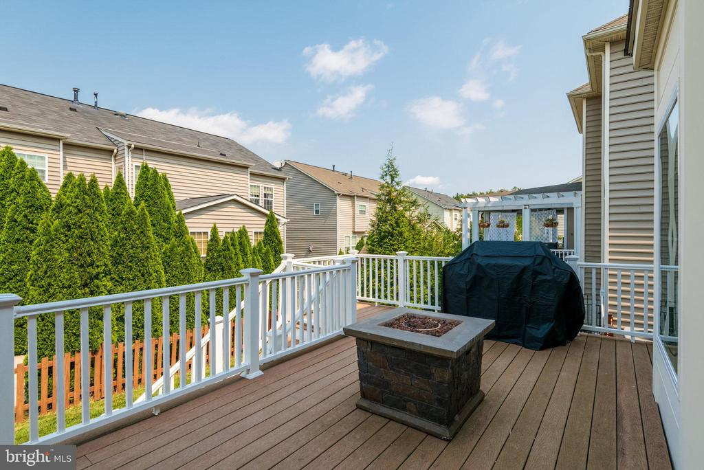 Rear Deck with Access to Backyard From Family Room - 42972 THORNBLADE CIR, BROADLANDS