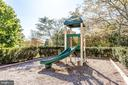 Community Playground - 42972 THORNBLADE CIR, BROADLANDS