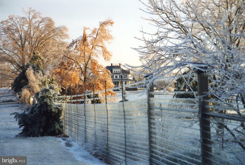 Winter - 11690 FREDERICK RD, ELLICOTT CITY