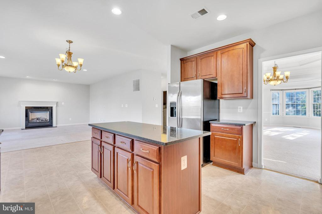 Recessed Lighting and Stainless Steel Appliances - 20373 MEDALIST DR, ASHBURN