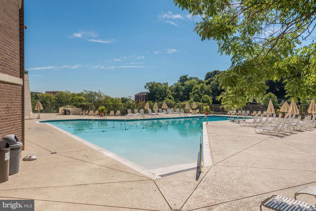 Outdoor pool - 1600 N OAK ST #525, ARLINGTON